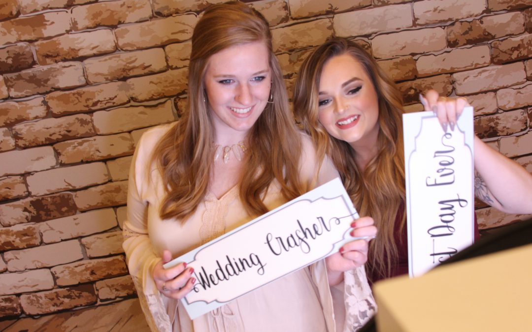 Brand New Beautiful Backdrops For Your Bash